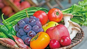 季節の野菜&フルーツのマルシェ[Seasonal fruit and vegetable market]