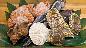 北海道直送の海鮮料理[Seafood delivered fresh from Hokkaido]