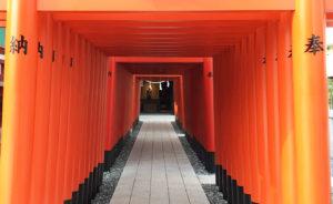 穴守稲荷神社改修工事が完成し、千本鳥居も色鮮やかに