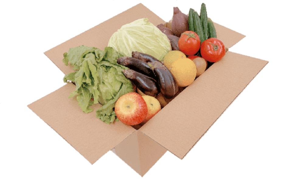 規格外野菜の「もったいない」を美味しく 「LOHAS MARCHE(ロハス マルシェ)」を開催